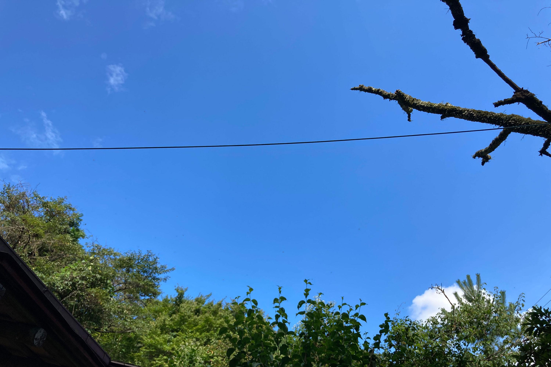 電線が写っている空