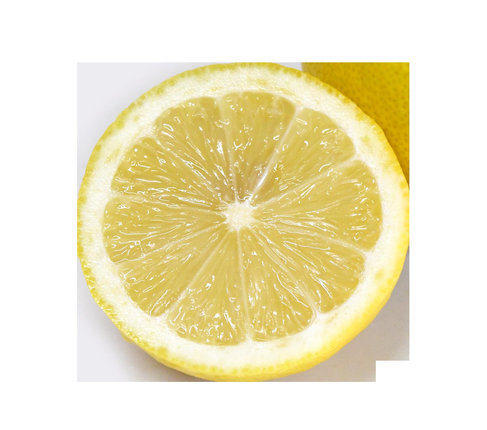 【切り抜き】レモンの輪切り