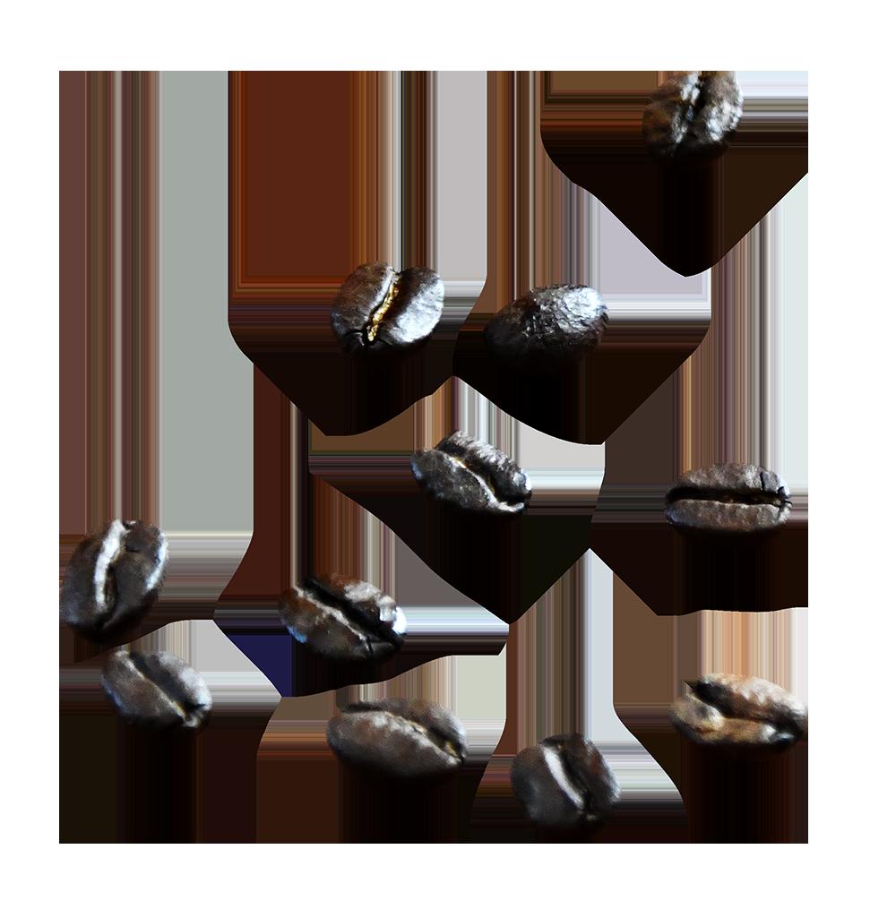 【切り抜き】コーヒー豆