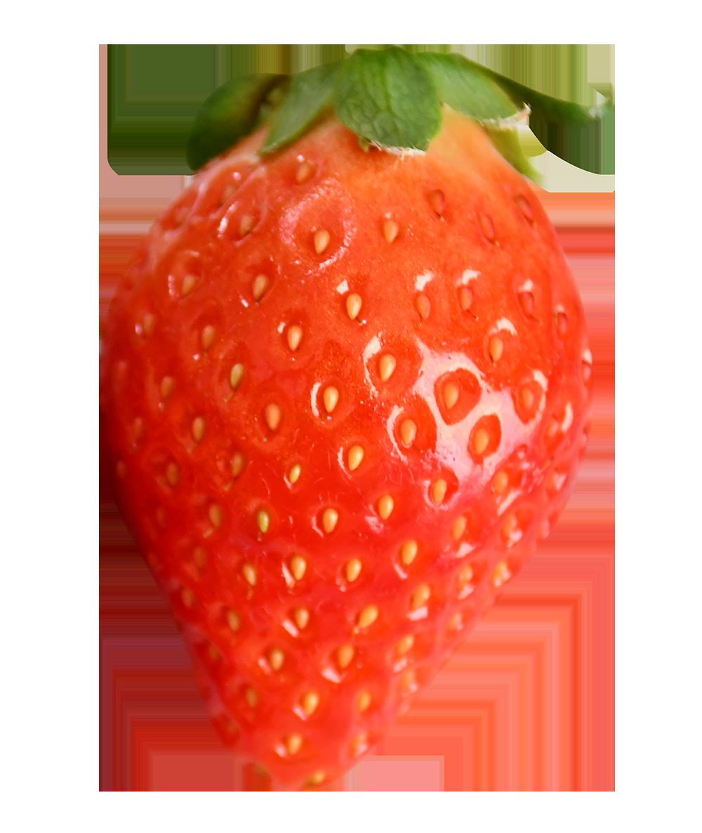 【切り抜き】苺2