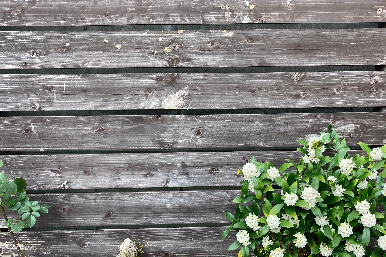 木の板と白いお花2