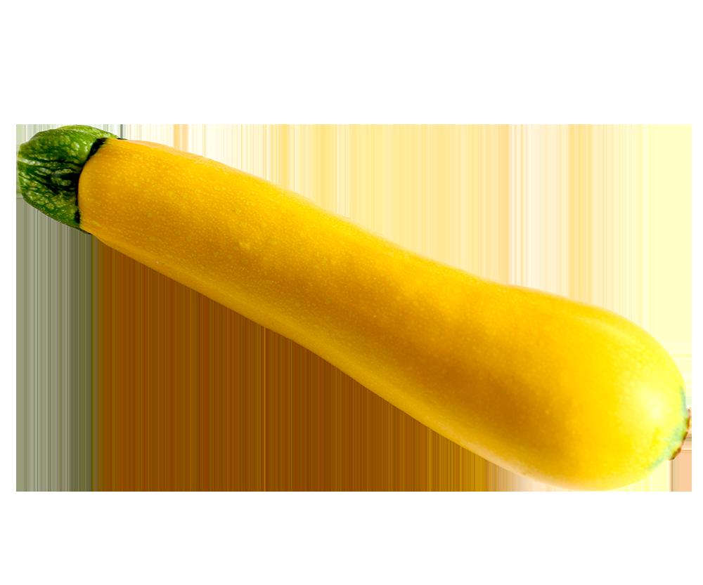 【切り抜き】黄色いズッキーニ