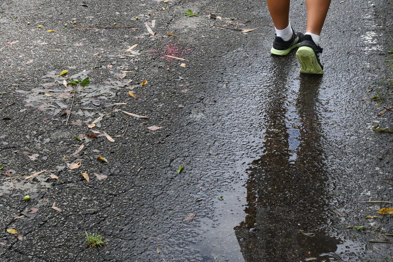 雨上がりの水たまりにうつる子供