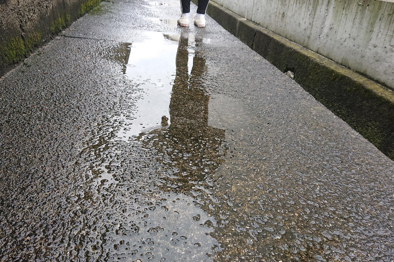 路面の水たまりにうつる人