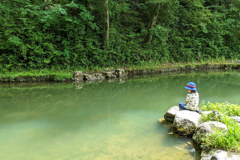 池を見つめる男の子