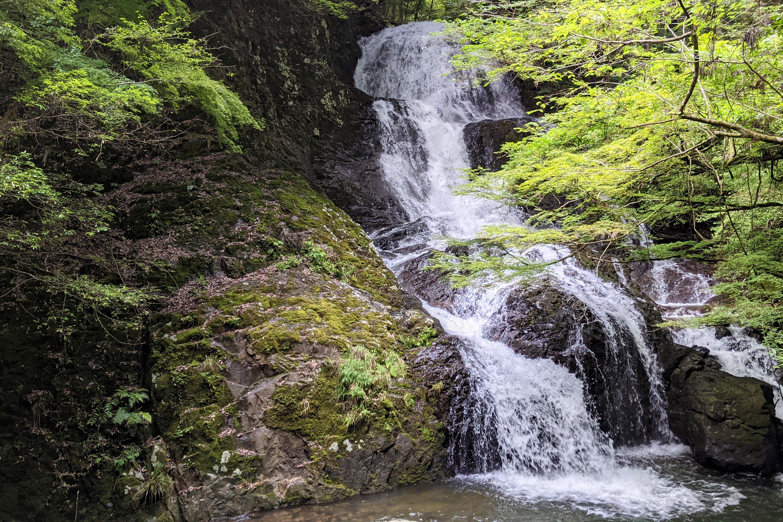 鮮やかな新緑と滝