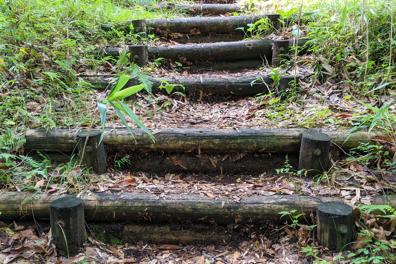山にある木の階段